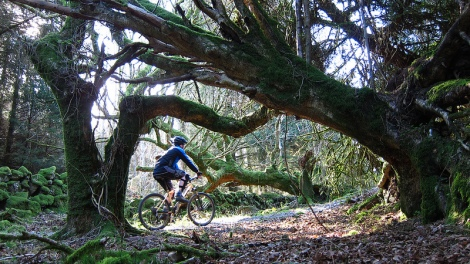 Me cycling at Dalbeattie, Galloway, Scotland