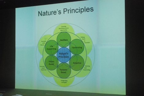 The Principles of Nature