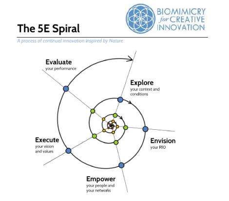 5E Spiral