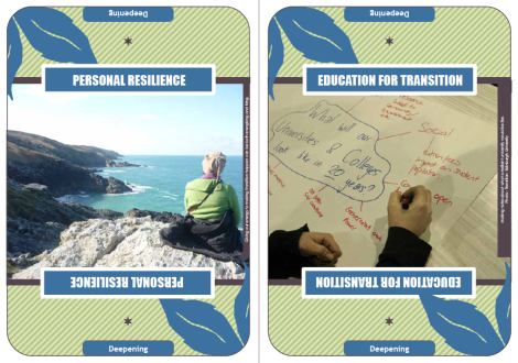 Transition Ingredients Cards