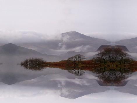 Photo: Simon Robinson