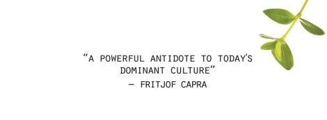 Fritjof Capra quote