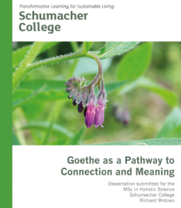Goethe as a Pathway to Connection and Meaning